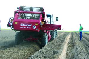Сепарация почвы